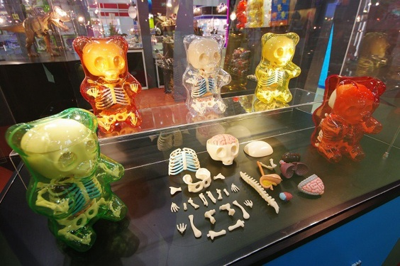 Jason Freeny Gummi Anatomy Toys